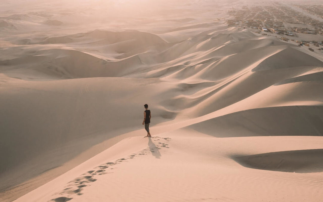 Desperate in the Desert